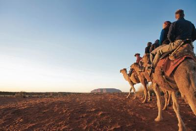 Auf zum Uluru (Ayers Rock)