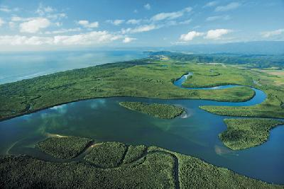 Daintree River, Tropical North