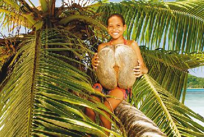 Mädchen in der Palme