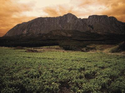 Der majestätische Mulanje Berg