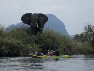 Kanufahrt im Niassa Wilderreservat