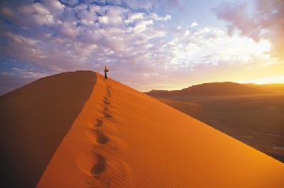 Wanderung auf dem Dünenkamm