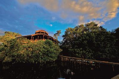 Haupthaus - La Selva Ecolodge