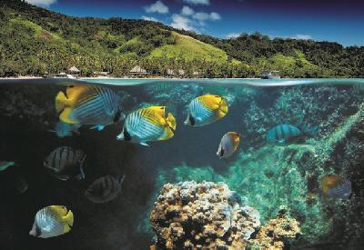 Lalati Island Resort © R. Forbes