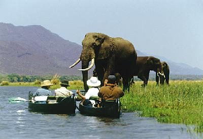Mit dem Kanu unterwegs auf dem Zambezi