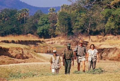 Buschwanderung im South Luangwa Tal